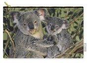 Koala Phascolarctos Cinereus Mother Carry-all Pouch by Gerry Ellis