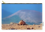 Landscape With Marmot Carry-all Pouch