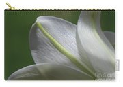 Lily Light Falls Carry-all Pouch