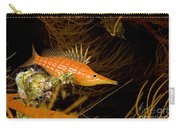 Longnose Hawkfish Carry-all Pouch