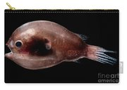 Male Anglerfish Carry-all Pouch