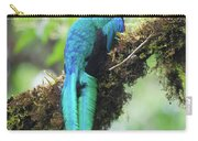 Male Quetzal Carry-all Pouch