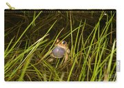 Male Toad Carry-all Pouch