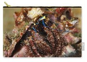Marine Hermit Crab Carry-all Pouch