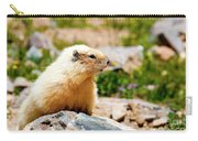 Marmot On Mount Massive Colorado Carry-all Pouch