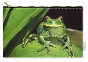 Marsupial Frog Gastrotheca Orophylax Carry-all Pouch
