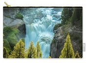 Mesa Falls - Yellowstone Carry-all Pouch