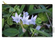 Mexican Clover Carry-all Pouch