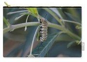 Monarch Catterpillar  Carry-all Pouch