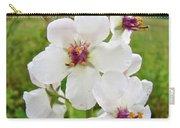 Moth Mullein Wildflowers - Verbascum Blattaria Carry-all Pouch