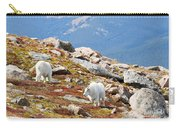 Mountain Goats On Mount Bierstadt In The Arapahoe National Forest Carry-all Pouch