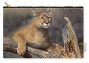 Mountain Lion Felis Concolor Carry-all Pouch