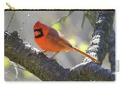 Mr Northern Cardinal Carry-all Pouch