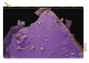 Mt. Saint Helens Volcanic Ash, Sem Carry-all Pouch