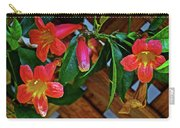 Orange Trumpet Vine At Pilgrim Place In Claremont-california   Carry-all Pouch