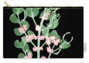 Pacific Mistletoe, Phoradendron Carry-all Pouch
