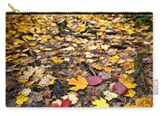 Path In Fall Forest Carry-all Pouch by Elena Elisseeva