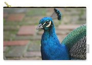 Peacock 2 Carry-all Pouch