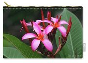 Plumeria Flowers 4 Carry-all Pouch