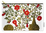 Pomegranate, 1613 Carry-all Pouch