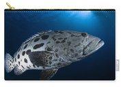 Potato Grouper, Australia Carry-all Pouch