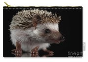 Prickly Hedgehog Isolated On Black Background Carry-all Pouch by Sergey Taran