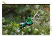 Quetzal In Costa Rica Carry-all Pouch