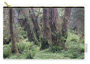Quinault Rain Forest 3156 Carry-all Pouch