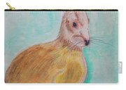 Rabbit Illustration Carry-all Pouch