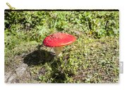 Red And White Potted Toadstool Carry-all Pouch