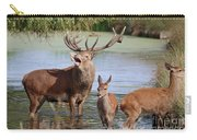 Red Deer In Bushy Park London Carry-all Pouch