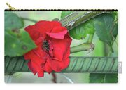 Red Rose On Natural Background With Green Leaves. Carry-all Pouch