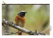 Redstart Carry-all Pouch