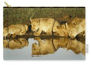 Reflected Lions Carry-all Pouch