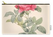 Rosa Gallica Pontiana Carry-all Pouch