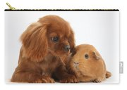 Ruby Cavalier King Charles Spaniel Pup Carry-all Pouch by Mark Taylor