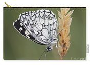 Satyr On The Grass Carry-all Pouch