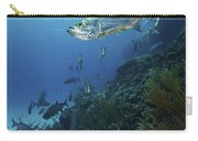 School Of Tarpon, Bonaire, Caribbean Carry-all Pouch by Terry Moore