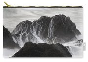 Seal Rocks Waves And Rocks 3 Bw Carry-all Pouch
