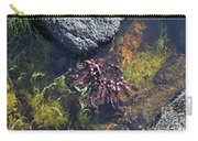Seaweed Growing In A Rockpool On The Shore Roundstone County Galway Ireland Carry-all Pouch
