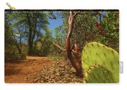 Sedona Area Carry-all Pouch