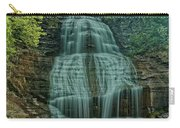 Shequaga Falls Carry-all Pouch