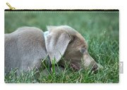 Silver Labrador Retriever Puppy  Carry-all Pouch