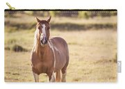 Single Horse Carry-all Pouch