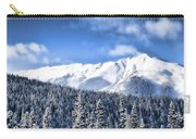 Snowmass Carry-all Pouch
