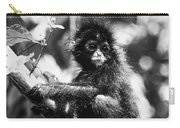 Spider Monkey Carry-all Pouch