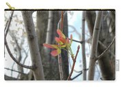 Spring Whirligig Carry-all Pouch