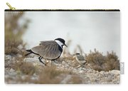 Spur-winged Lapwing Vanellus Spinosus Carry-all Pouch