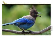 Stellers Jay Carry-all Pouch