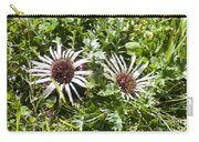 Stemless Carline Thistle Carlina Acaulis Carry-all Pouch
